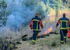 Brandweer heeft handen vol aan Rietbrand in Groninger wijk Vinkhuizen